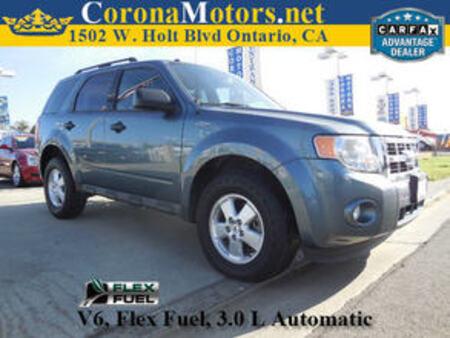 2010 Ford Escape XLT for Sale  - 11448  - Corona Motors