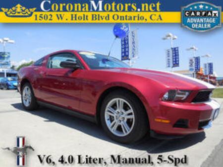 2010 Ford Mustang V6 for Sale  - 11252  - Corona Motors