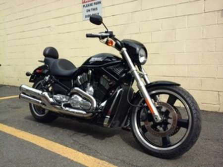 2008 Harley-Davidson V-Rod NIGHT ROD for Sale  - 08HDNIGHTROD-390  - Triumph of Westchester