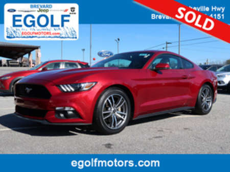 2015 Ford Mustang EcoBoost Premium for Sale  - 10730  - Egolf Motors