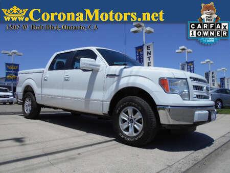 2014 Ford F-150 XL for Sale  - 12829  - Corona Motors