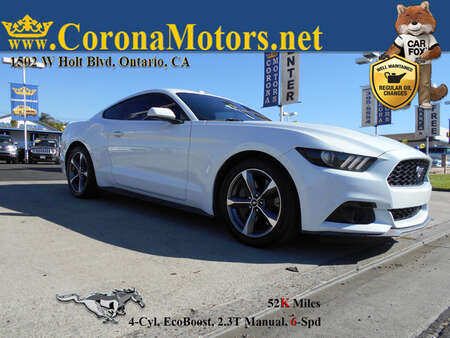 2015 Ford Mustang EcoBoost for Sale  - 12919  - Corona Motors