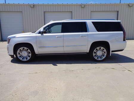 2018 Cadillac Escalade ESV ESV Escalade, Loaded, 4 wheel Drive Premium Luxury for Sale  - 0923  - Auto Drive Inc.