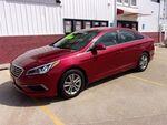 2016 Hyundai Sonata  - Martinson's Used Cars, LLC