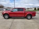 2016 Ford F-150  - Nelson Automotive