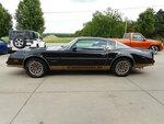 1978 Pontiac Firebird  - Nelson Automotive