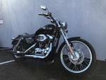 2010 Harley-Davidson Sportster  - Triumph of Westchester
