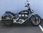 2016 Indian Scout  - Triumph of Westchester