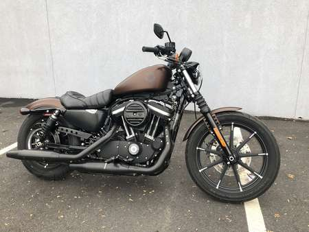 2019 Harley-Davidson Sportster Iron 883 for Sale  - 19HDIRON883-254  - Triumph of Westchester