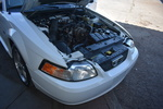 2002 Ford Mustang  - Dynamite Auto Sales