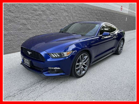 2015 Ford Mustang EcoBoost Premium Coupe 2D for Sale  - AP1135  - Okaz Motors