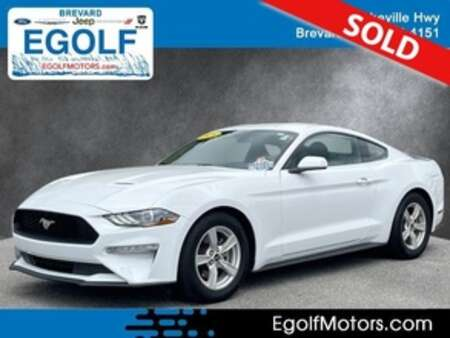 2020 Ford Mustang EcoBoost for Sale  - 5231  - Egolf Motors