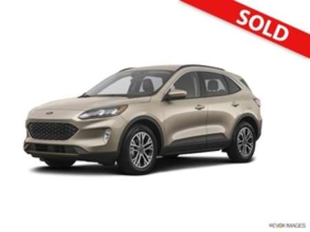 2020 Ford Escape SEL AWD for Sale  - 5258  - Egolf Motors