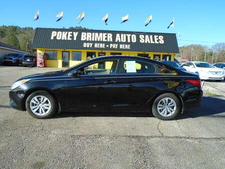 2011 Hyundai Sonata  for Sale  - 7365  - Pokey Brimer