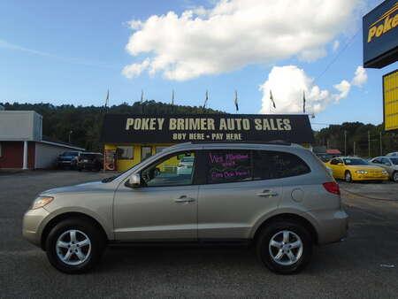 2007 Hyundai Santa Fe  for Sale  - 7561  - Pokey Brimer