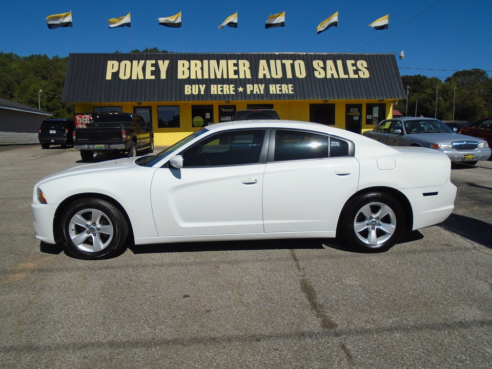 2014 Dodge Charger  - Pokey Brimer