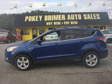 2013 Ford Escape  for Sale  - 7225  - Pokey Brimer
