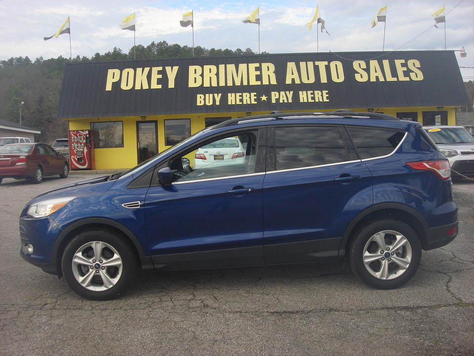 2013 Ford Escape  - 7225  - Pokey Brimer