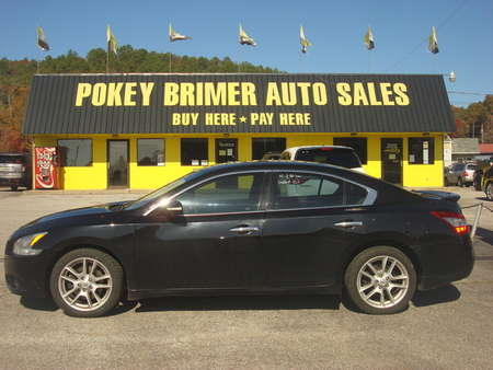 2009 Nissan Maxima  for Sale  - 6925  - Pokey Brimer