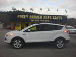 2013 Ford Escape  - Pokey Brimer
