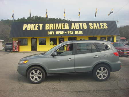 2007 Hyundai Santa Fe  for Sale  - 7180  - Pokey Brimer