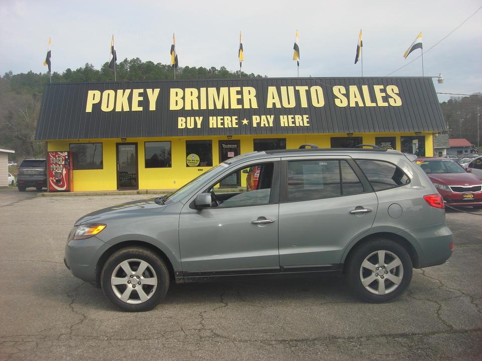 2007 Hyundai Santa Fe  - 7180  - Pokey Brimer