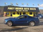 2008 Ford Mustang GT  - Pokey Brimer