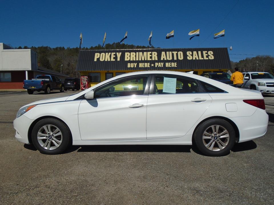 2013 Hyundai Sonata  - 7399  - Pokey Brimer