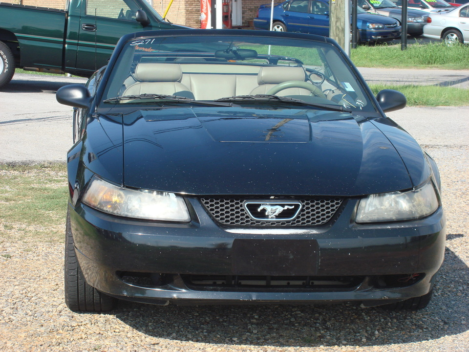 2003 Ford Mustang  - Pokey Brimer