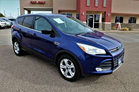 2014 Ford Escape  for Sale  - F10008A  - Fiesta Motors
