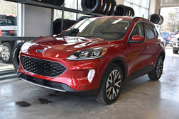 2020 Ford Escape SEL  - MT-20139  - Alliance Ford