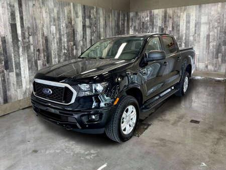2019 Ford Ranger XLT 4WD SuperCrew for Sale  - C3517  - Alliance Ford