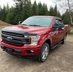 2019 Ford F-150 XLT 4WD SuperCrew  - 21066A  - Alliance Ford