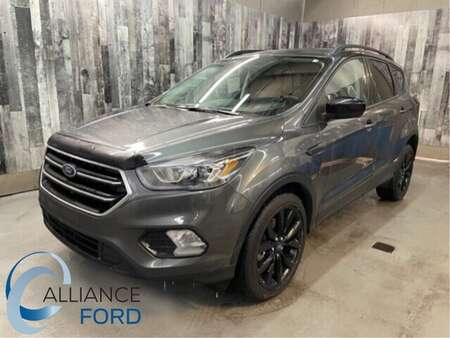 2019 Ford Escape SE for Sale  - 19158  - Alliance Ford