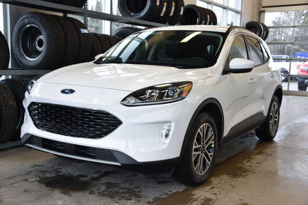 2020 Ford Escape SEL AWD for Sale  - 20099  - Alliance Ford