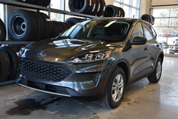 2020 Ford Escape S AWD  - MT-20100  - Alliance Ford