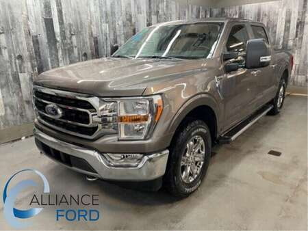 2021 Ford F-150 XLT for Sale  - 21012  - Alliance Ford