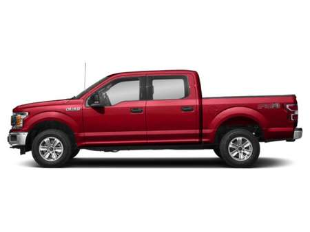 2019 Ford F-150 XLT 4WD SuperCrew for Sale  - 19175  - Alliance Ford